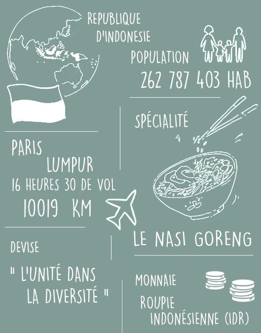 indonesie en chiffres